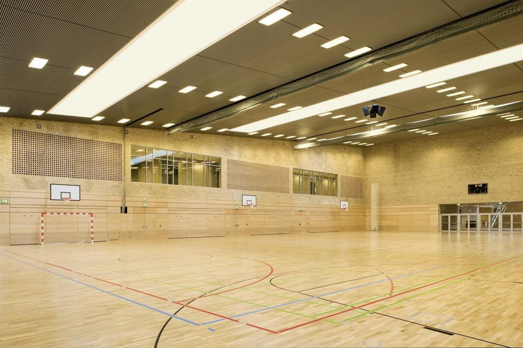 lednol-sport